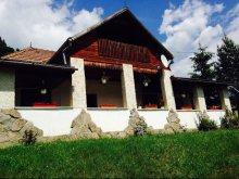 Cabană Bârgăuani, Casa de oaspeți Fintu