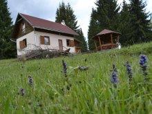 Accommodation Izvoru Mureșului, Ezüstvirág Chalet