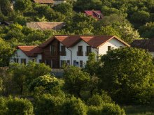 Accommodation Rimetea, Card de vacanță, Casa Iuga Guesthouse