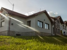 Accommodation Cornești (Mihai Viteazu), Casa Iuga Guesthouse