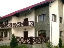 Accommodation Cetățuia (Vela), Natura Green Guesthouse