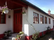Accommodation Crăești, Faluvégi Guesthouse