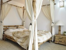 Accommodation Udrești, Conac Bavaria Hotel