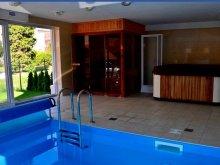 Accommodation Ráckeve, Bálint Wellness Apartment