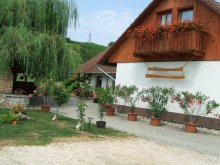 Accommodation Győr-Moson-Sopron county, Józandűlő Guesthouse