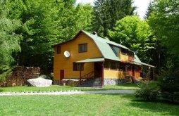Casă de oaspeți Transilvania, Casa de oaspeți Szilvia