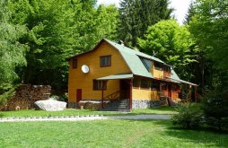 Guesthouse Harghita county, Szilvia Guesthouse