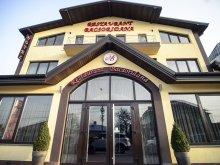Cazare Scărlătești, Hotel Bacsoridana