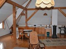 Accommodation Badacsonytördemic, Bálint Apartment