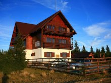 Accommodation Schitu-Matei, La Cristian Chalet