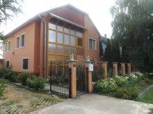 Accommodation Szépasszony valley, Brigitta Guesthouse