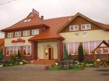 Accommodation Toplița, Barátság Guesthouse