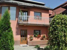 Villa Nagyszeben (Sibiu), Rica Villa