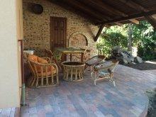 Accommodation Hajdú-Bihar county, Diófa Guesthouse