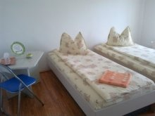 Accommodation Dâmburile, F&G Guesthouse