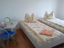 Accommodation Gaiesti, F&G Guesthouse