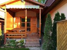 Accommodation Tiszatenyő, Kis Vacation home