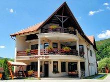 Pensiune Gheorgheni, Pensiunea și Restaurant Csatári