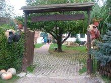 Accommodation Kaposvár, Tekeresi Lovaspanzió Guesthouse