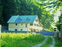 Villa Boboș, Tichet de vacanță, Alice Villa