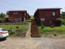 Accommodation Richiș, Só-Kristály Guesthouse