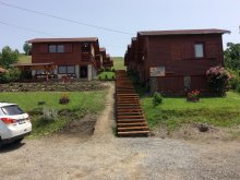 Accommodation Trei Sate, Só-Kristály Guesthouse