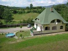 Kulcsosház Parajdi sóbánya, Birton Csaba Kulcsosház