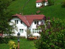 Accommodation Valea Cetățuia, Bangala Elena Guesthouse