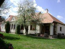 Vendégház Bargován (Bârgăuani), Ajnád Panzió
