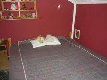 Cazare Balatonszemes, FE-30: Apartament de 2-3 persoane