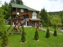 Accommodation Liban, Cserny Csaba Guesthouse