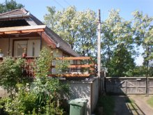 Accommodation Mușcel, Fehér Akác Guesthouse