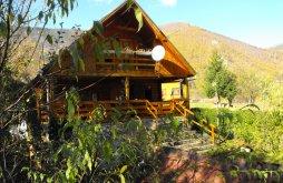 Accommodation Râu de Mori, Pin Alpin Chalet