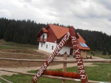Szállás Trișorești, Alexandra Agroturisztikai Panzió