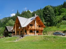 Accommodation Finiș, Larix Guesthouse
