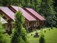 Package Praid, Patakmenti Guesthouse and Villa (SPA)