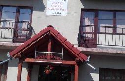 Accommodation Tureni, Gold Fayen House
