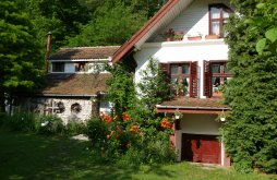 Accommodation near Afteia Monastery, Iedera Family Guesthouses