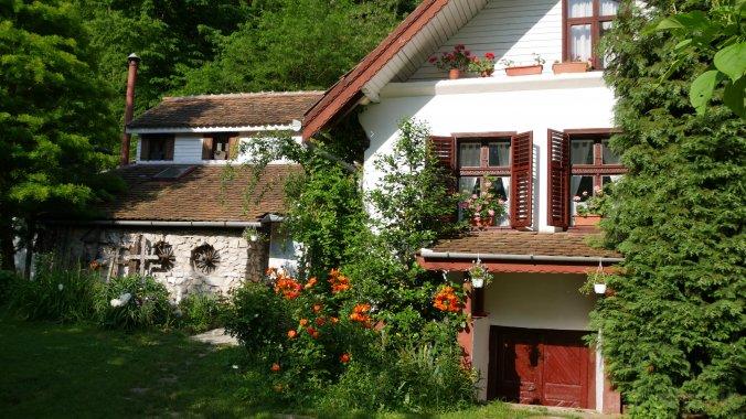 Iedera Family Guesthouses Pianu de Sus