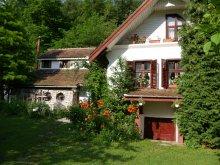 Panzió Vizakna (Ocna Sibiului), Tichet de vacanță, Iedera Panzió