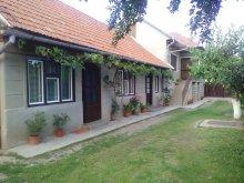 Accommodation Sâncraiu, Ibi Guesthouse