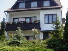 Accommodation Lake Balaton, M&M Apartment (Ground floor)