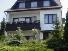 Accommodation Lake Balaton, M&M Apartment (first floor)