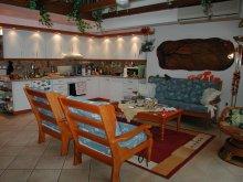 Cazare Lacul Balaton, Apartament Violetta