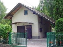 Cazare Lacul Balaton, Casa de vacanță Emil (C)