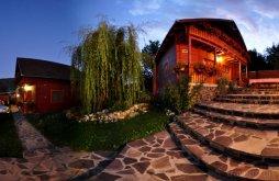 Accommodation Zetea, Olga Guesthouse