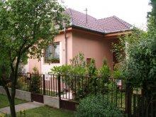 Accommodation Hajdúszoboszló, Orbán Guesthouse