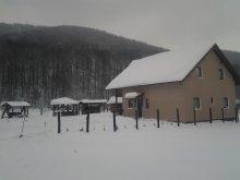 Guesthouse Bistrița Bârgăului Fabrici, Fényes Guesthouse