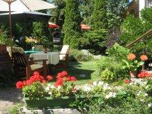 Accommodation Szépasszony valley, Bacchus Guesthouse