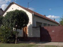Apartament Tiszasziget, Pensiunea Csányi